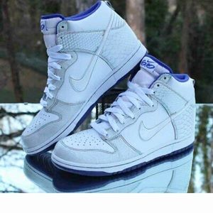 Nike Dunk High 6.0 White Fish Scales Multicolor